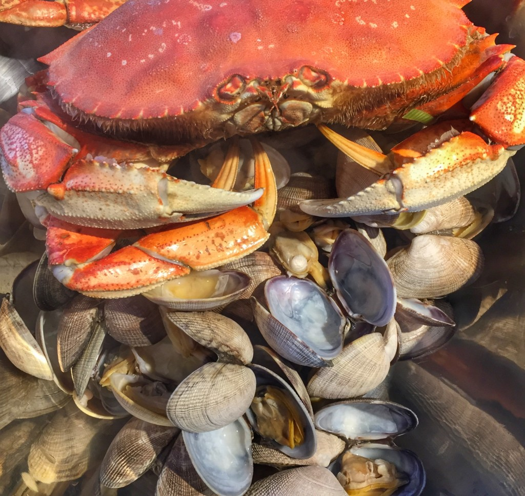 Whole crab among clams and mussels