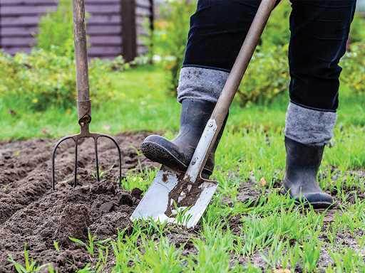 Mulch? Dirt? Prepping your garden for spring