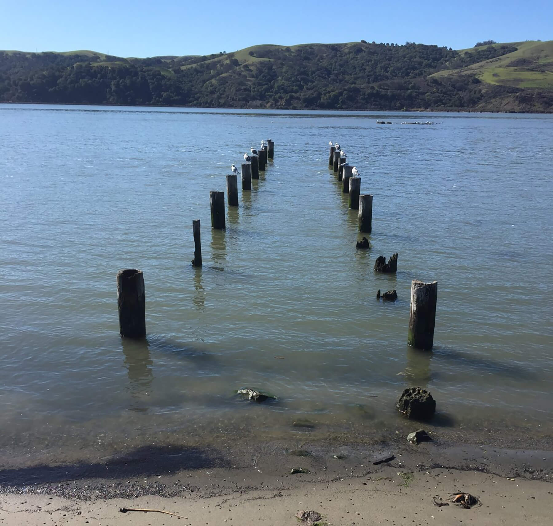 Remains of wharf at Benicia where London might have moored his boat