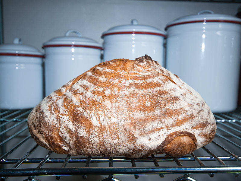 The Handcrafted At Home Artisan Bread Revolution