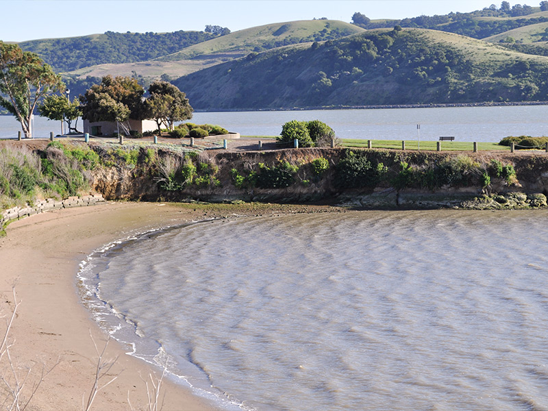 Sprucing Up Benicia's Beaches During Coastal Cleanup