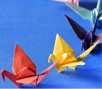 Matthew Turner kids Send 1,000 Paper Cranes to Japan