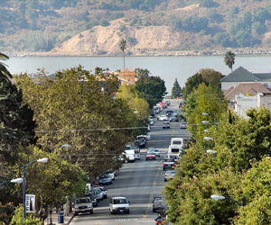 Understanding And Valuing Benicia's Urban Forest