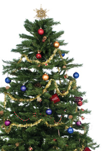 Christmas Tree  Safety Tips  by Benicia Fire Department