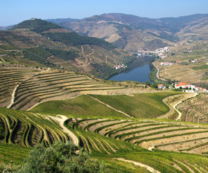 Portugal: Sea, Sunshine, Corks And Delectable Port