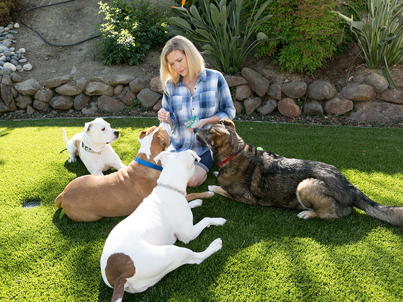 Interview: Working With Homeless Animals Feeds Peggy Hartig's Soul