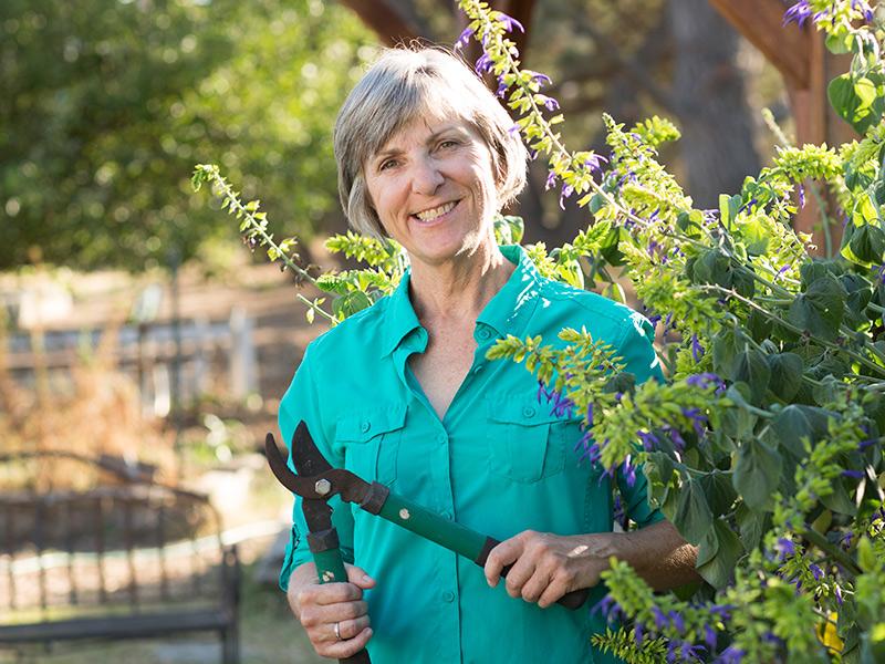 Bio: Sheila Clyatt, Master Gardener & Mary Farmer School Garden Volunteer