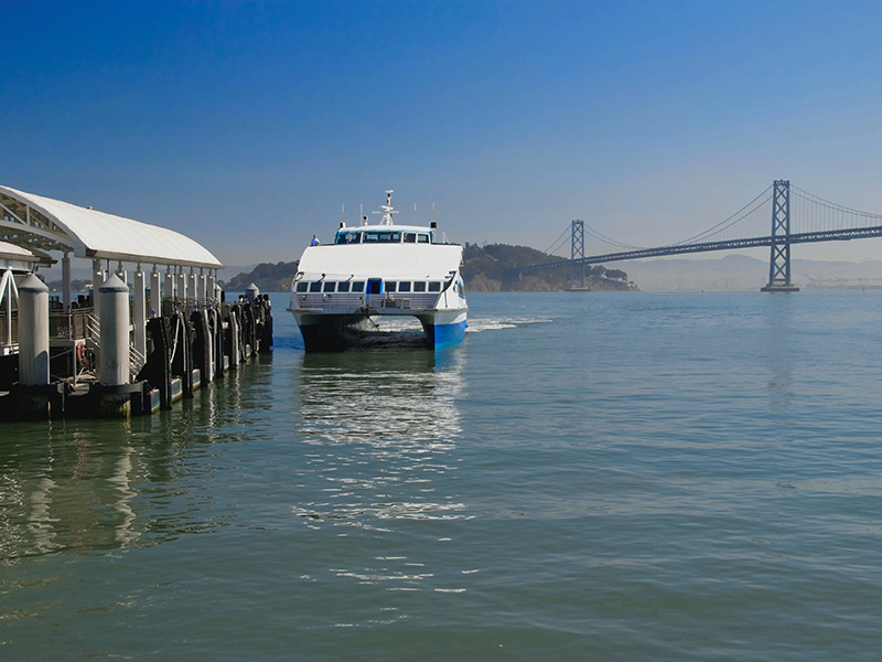 Explore The Best Of The Bay, Leaving The Car At Home