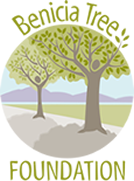 2012 Tree Planting Season In Benicia Starts With Two Volunteer Events In January