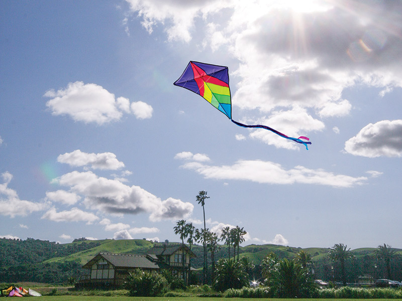 Benicia's Spring Breeze Makes For Perfect Kiting