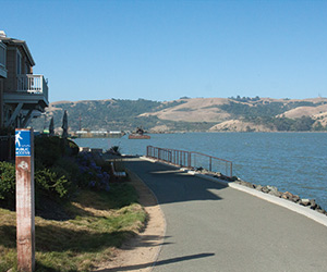 The Sustainability Commission's B2: Bicycle Benicia, Gets Underway