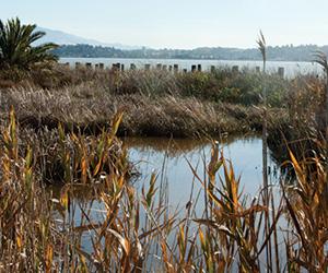 Benicia's Waterfront Enhancement Plan Kicks Into Gear