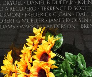 Looking Back: Vietnam Veterans Exhibit