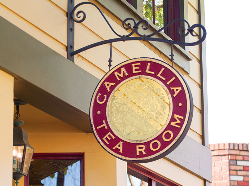 Delving Into The Many Lunch Delights At Camellia Tea Room