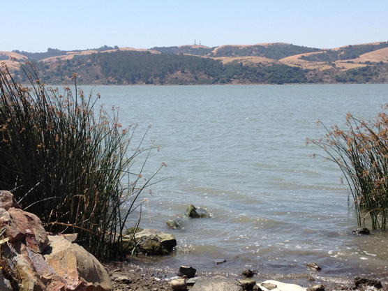 California Parks  Dept. Underreports $54 Million